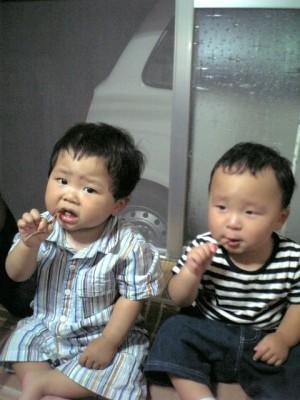 スルメを食べる1歳児。せなと君とゆうと君。